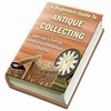 Thumbnail A Beginners Guide To Antique Collecting With Plr