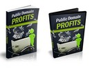 Public Domain Profits - eBook and Videos