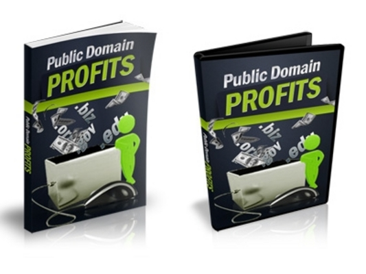 Product picture Public Domain Profits - eBook and Videos