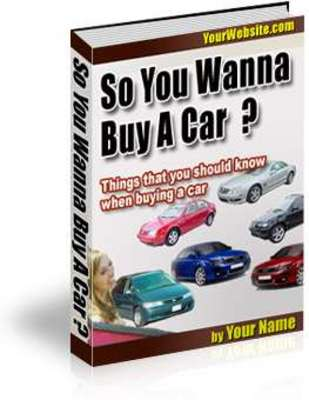 Product picture So You Wanna Buy a Car plr